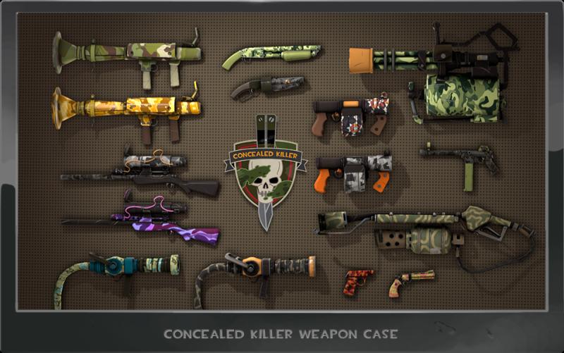concealed_killer_case